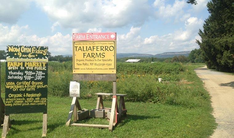 Taliaferro Farms