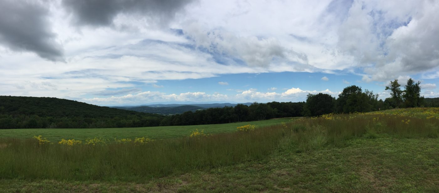 Overmountain Conservation Area (Photo: Columbia Land Conservancy)