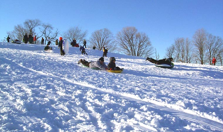 Sledding at Burger Hill