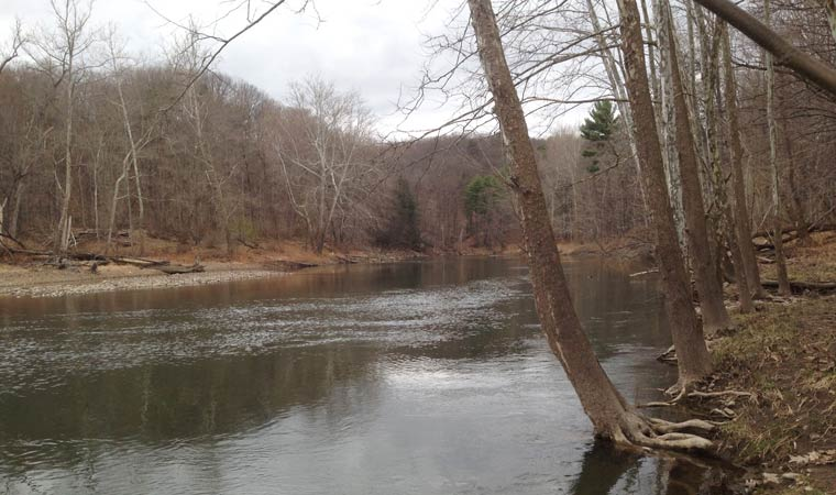 Catskill Creek Property