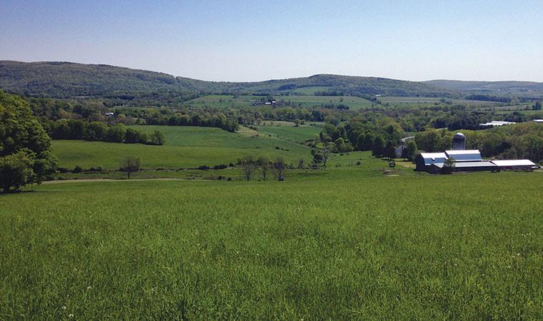 Duncandale Farm