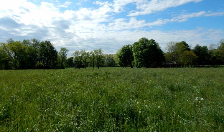Newly conserved farmland
