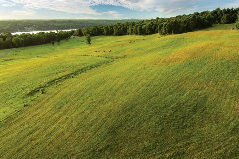 Fields at Riverhill Farm