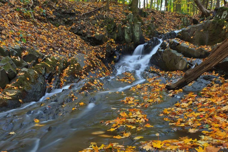 Waterfall at Falling Waters Preserve