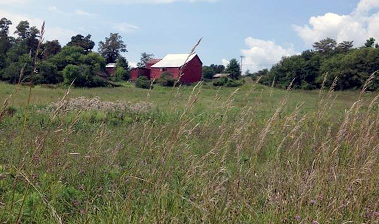 Barn at Long View Park