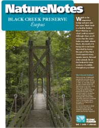 Black Creek Preserve Nature Notes Booklet