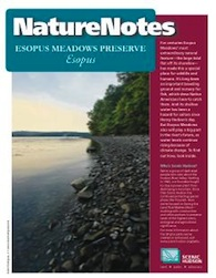 Esopus Meadows Nature Notes Booklet