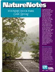 Foundry Dock Park Nature Notes Booklet