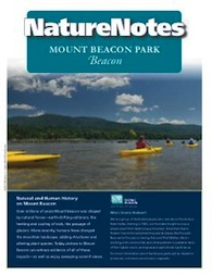Mount Beacon Nature Notes Booklet