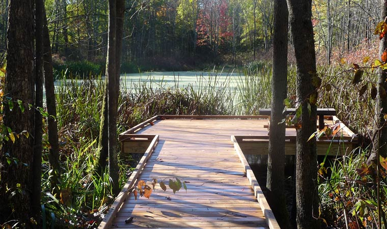 Marsh viewing platform at Four-Mile Point