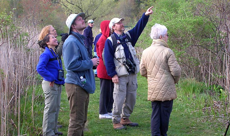 RamsHorn Birdwatchers