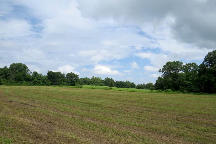 Recently protected farmland in Stuyvesant