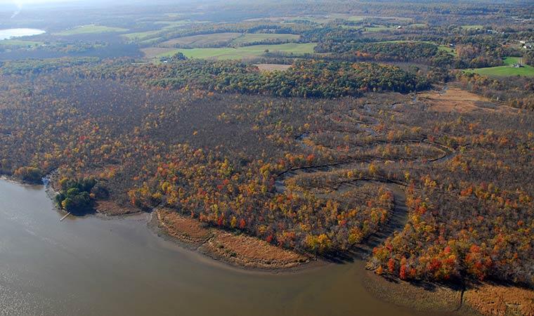 Rams-Horn Marsh from the Air