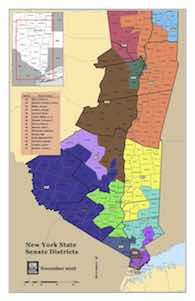 NY Senate District Map