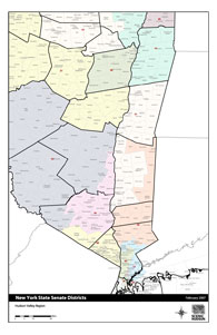 NY State Senate Map